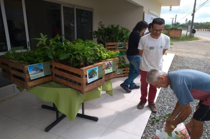 Instituto Itajaí Sustentável promove feira de doação de mudas