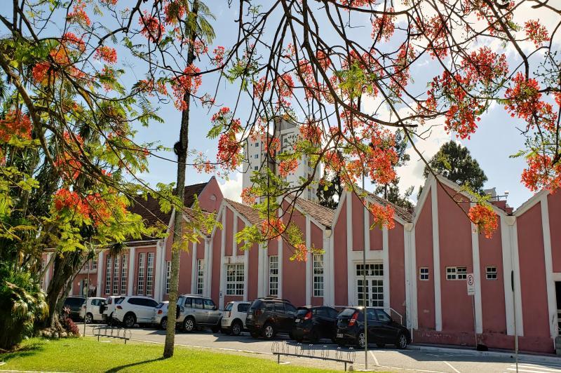 Dia Nacional da Biblioteca é comemorado nesta sexta-feira (09)