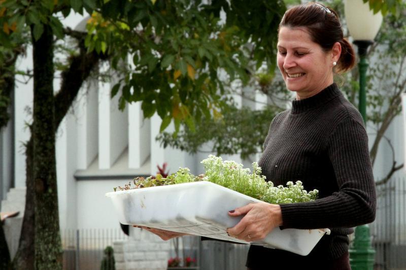 Horto Municipal distribui flores na pr�xima semana