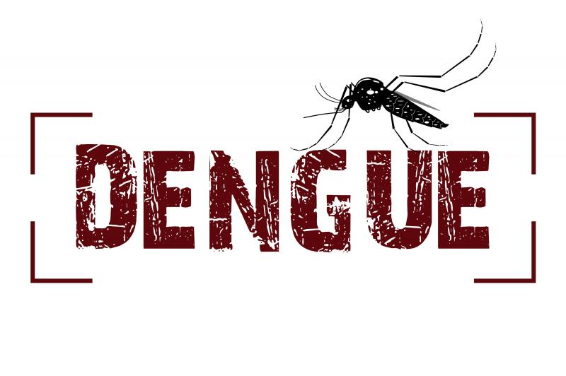Dengue: Agentes de endemias fazem levantamento no munic�pio
