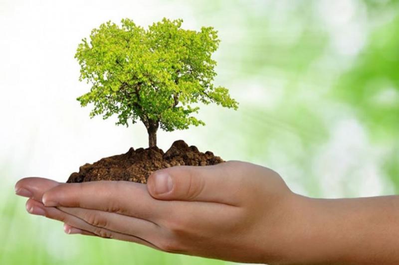 Semin�rio discute Meio Ambiente e Sa�de