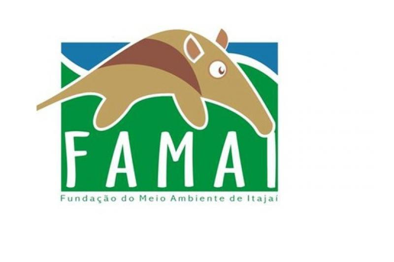 Famai esclarece procedimento para liga��es de luz