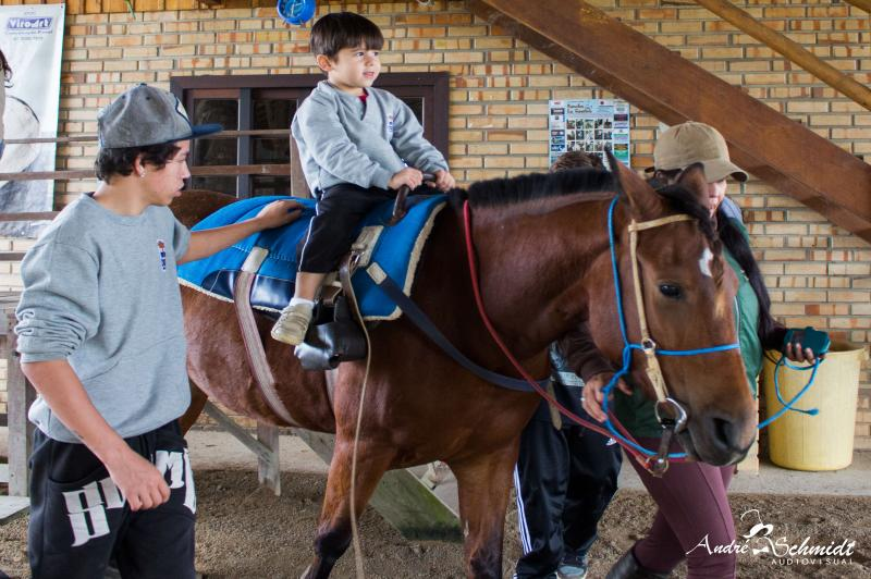 Estudantes participam do programa Conexão Equitação e Campo