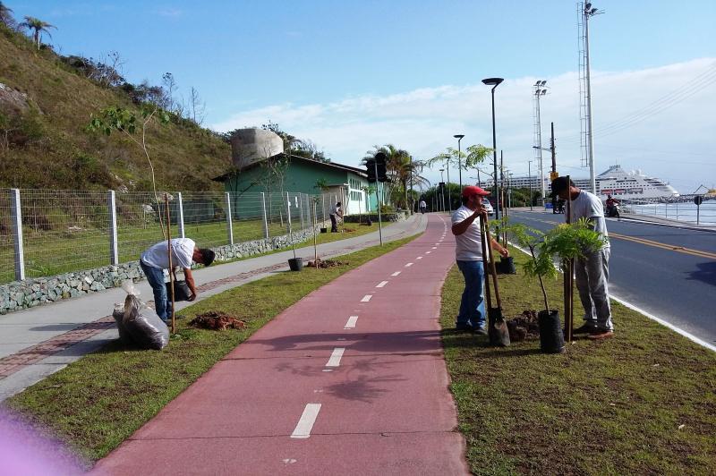 Famai realiza plantio no Caminho de Cabeçudas