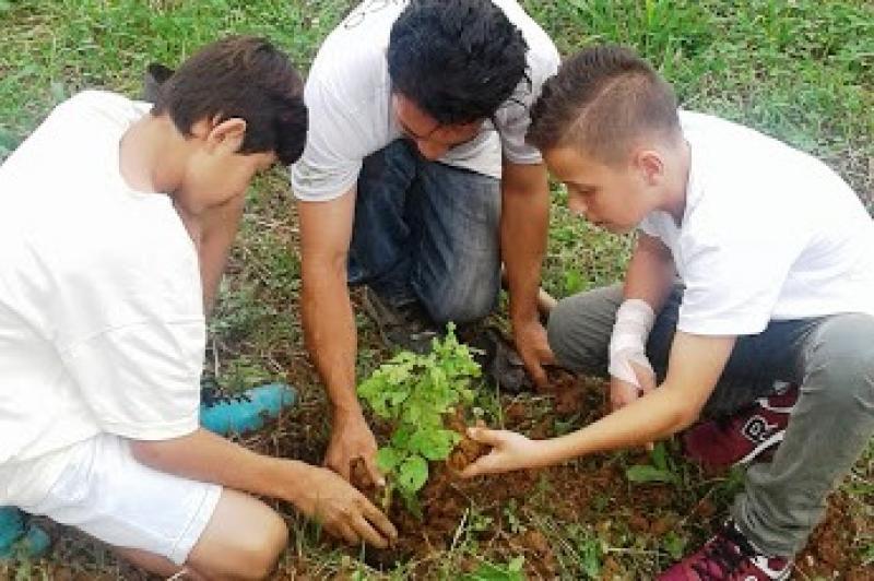 Plantio de mudas movimenta Dia Mundial da Água em Itajaí