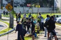 Semana do Meio Ambiente encerra com plantio de árvores