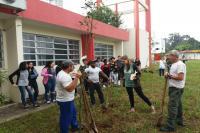 Escola Básica Nereu Ramos recebe plantio de árvores