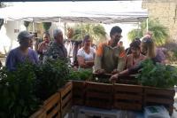 Ações ambientais de junho aumentaram a participação da comunidade