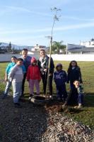 Escola do Cidade Nova recebe plantio de árvores e revitalização de horta