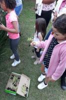Moradores do loteamento São Francisco de Assis participam de oficina de hortas