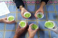 Oficina de aproveitamento integral de alimentos envolve idosos do Cidade Nova