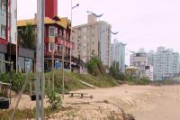 Município dá continuidade ao combate dos escorpiões na Praia Brava