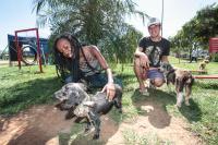 1ª Semana do Bem-Estar Animal conscientizará sobre responsabilidade com animais
