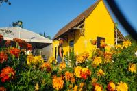 Primavera de Museus terá ações na Itaipava