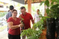Instituto Cidade Sustentável promove duas feiras de doação de mudas