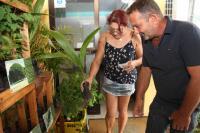 Instituto Cidade Sustentável promove feira de doação de mudas