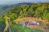 Feiras de mudas em Itajaí distribuíram mais de 10 mil plantas nativas