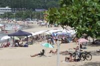 Itajaí inicia o ano com 100% das praias próprias para banho