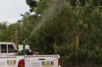 Aplicação de inseticida no bairro Cordeiros é cancelada