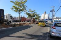 Instituto Itajaí Sustentável vai transplantar árvores da Caninana para a praça da Matriz
