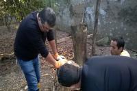 Zoonoses faz busca ativa de escorpi�es