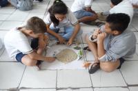 Alunos participam de aula sobre fósseis