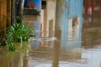 Trabalho preventivo continua em Itajaí e tempo deve melhorar