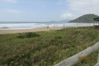 Recuperação ambiental da restinga da Praia Brava inicia na próxima semana