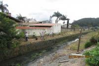 Famai realiza plantio de 50 mudas de árvores