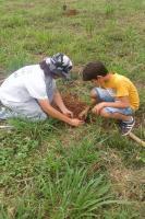 Alunos da Escola Maria do Carmo Vieira realizam plantio de árvores nativas