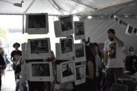 Mercado Público recebe feira Surto no domingo (11)
