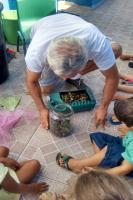 Centro de Educação Infantil realiza projeto Vida de Borboleta