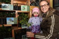 Famai doa 800 mudas durante feira na 23ª Semana do Meio Ambiente