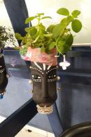 Centro Educacional de Cordeiros propõe atividades sobre culturas afro e indígena
