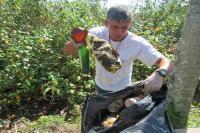Dia D de combate ao Aedes aegypti mobiliza população em Itajaí