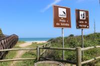 Badalação e prática de surf atraem turistas para a Praia Brava
