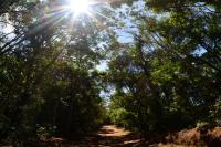 Itajaí promove 1ª Trilha do Nascer do Sol no Parque do Atalaia