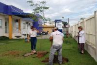 Unidade Básica de Saúde do Portal recebe plantio de árvores